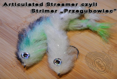 Articulated Streamer czyli